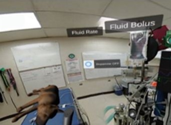 Virtual Reality Anesthesia – Veterinary Medicine Anesthesia Training Interactive Platform